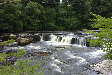 Aysgarth Falls and Hardraw Force