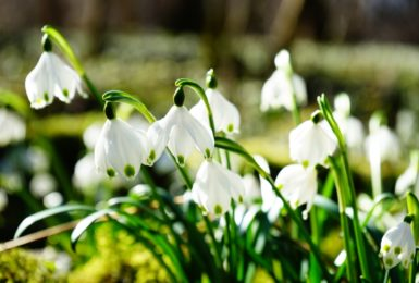 Outdoor activities to do this Easter