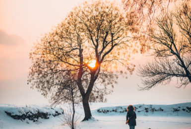 Perfect Winter Walks at Park Leisure
