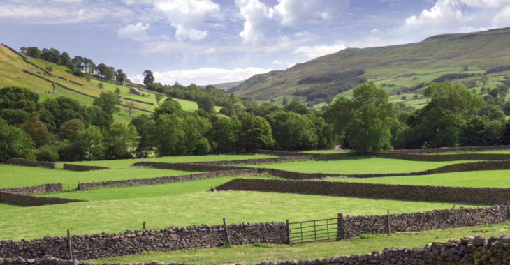 Discover the vast number of things to do in and around Littondale