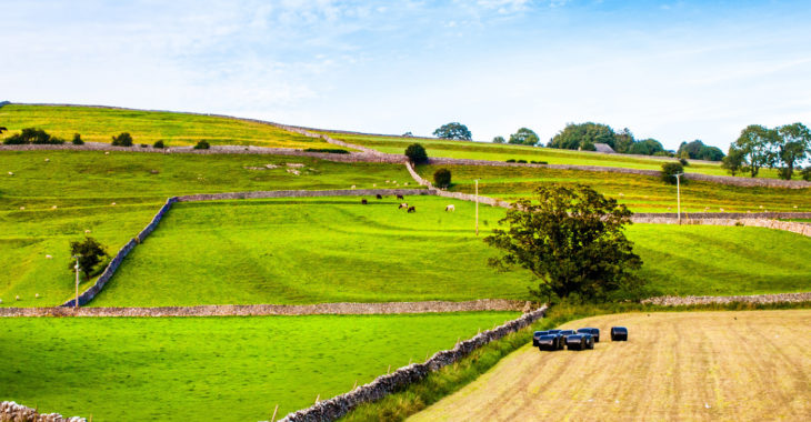 Escape to the Yorkshire Dales - beautiful holiday homes for nature lovers
